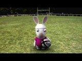 Кролики не умеют играть в рекби